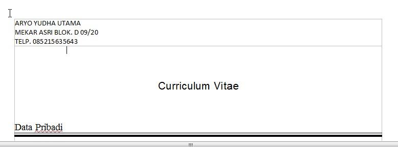 membuat surat lamaran kerja dan curriculum vitae
